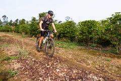 Equitação áspera em Costa Rica Fotografia de Stock Royalty Free