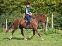 Equitação da mulher Fotografia de Stock