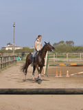 Equitação da mulher em um cavalo Imagens de Stock Royalty Free
