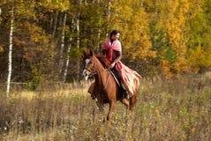 Equitação da rapariga no campo Fotos de Stock
