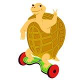 Equitação da tartaruga dos desenhos animados no 'trotinette' bonde Imagens de Stock