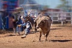 Equitação de Bull do solavanco em um rodeio do país imagens de stock
