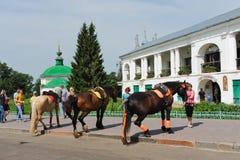 Equitação de cavalo na cidade do turista Imagens de Stock