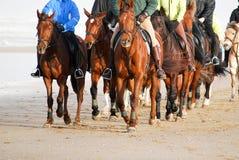 Equitação de horseback do grupo de Frontview na praia Fotografia de Stock Royalty Free