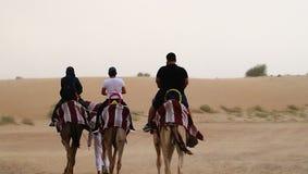 Equitação do camelo imagens de stock