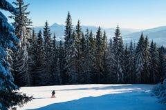 Equitação do esquiador na neve fresca nas montanhas Carpathian, Ucrânia imagem de stock