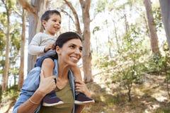 Equitação do filho em ombros do ` s da mãe na caminhada do campo imagens de stock royalty free