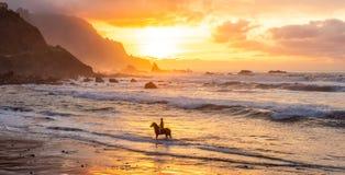 Equitação do homem na praia do por do sol foto de stock royalty free