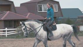 A equitação do jóquei da menina em seu cavalo branco video estoque