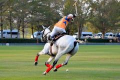 Equitação do jogador do polo do cavalo foto de stock royalty free