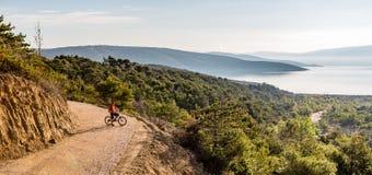 Equitação do motociclista da montanha na bicicleta em madeiras do por do sol do verão Fotografia de Stock
