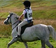 equitação do país x Imagem de Stock