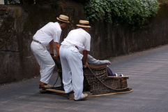 Equitação do Sledge em funchal Fotos de Stock