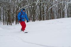 Equitação do Snowboarder ao longo da inclinação da floresta, após a queda de neve Imagens de Stock