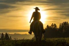 Equitação do vaqueiro através da pastagem com as montanhas no fundo