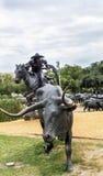 Equitação mais ridier da fuga após uma vaca do longhorn fotos de stock royalty free