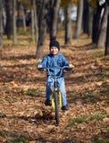 Equitação na bicicleta no parque do outono, dia ensolarado brilhante do menino, folhas caídas no fundo imagens de stock