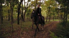 Equitação no galope fêmea profissional do cavaleiro da floresta do outono no parque: cavaleiro fêmea novo no cavalo em um obscuro vídeos de arquivo