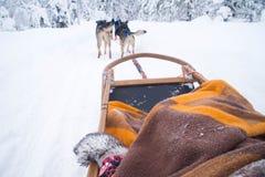 Equitação ronca do trenó em Rovaniemi, Finlandia imagem de stock