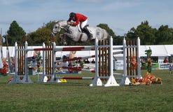Equitação Zibbibo de Maurício Beatson fotos de stock