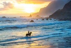 Equitaci?n en la playa del oc?ano en fondo de la puesta del sol foto de archivo