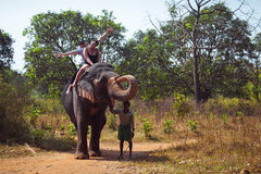 Equitação do elefante Fotos de Stock Royalty Free