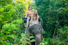 Equitação feliz em um elefante, mulher da família que senta-se no pescoço do ` s do elefante Imagem de Stock Royalty Free