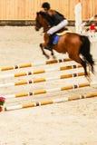 equitation покажите скакать, лошадь и всадника над скачкой стоковая фотография