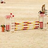 equitation Препятствие для скача лошадей стоковые изображения