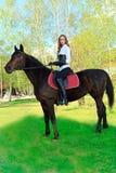 Equitation Royalty Free Stock Photos