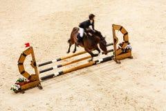 equitation pokazuje doskakiwanie, konia i jeźdza nad skokiem, Zdjęcie Royalty Free