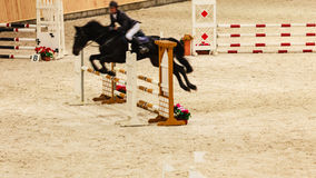 Equitation. show jumping, horse and rider over jump Stock Photography