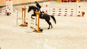 Equitation. show jumping, horse and rider over jump Stock Image