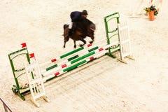equitation zeigen Sie das Springen, Pferd und Reiter über Sprung lizenzfreies stockfoto