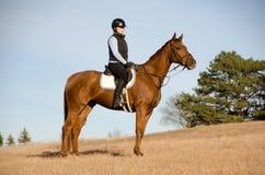 Equitazione nel campo fotografia stock