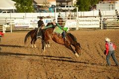 Equitazione nell'azione Fotografia Stock