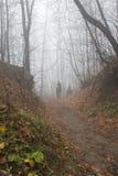 Equitazione nella foresta di autunno Immagini Stock
