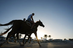 Equitazione sulla spiaggia Fotografie Stock