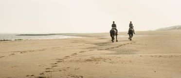 Equitazione sulla spiaggia nelle prime ore del mattino Fotografie Stock Libere da Diritti