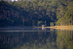 1er, décembre 2016 - la petite maison dans le lac TuyenLam à la fuite Dong Vietnam de Dalat- Image libre de droits