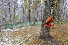 Er is een vogelhuis op berk, in Russische stijl in de winterpark dat wordt geschilderd Royalty-vrije Stock Afbeeldingen
