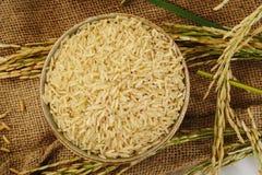 Er hat ein mildes nussartiges Aroma, ist zäher und nahrhafter als weißer Reis Stockbild