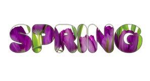 Er zijn bloemen in de de LENTEtekst Stock Afbeelding