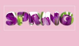 Er zijn bloemen in de de LENTEtekst Stock Afbeeldingen