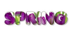 Er zijn bloemen in de de LENTEtekst Royalty-vrije Stock Afbeeldingen