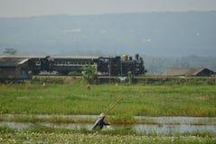 Era för järnväg lokomotiv för historikerånga av ansträngning Royaltyfri Bild