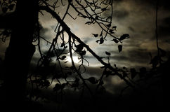 Era una notte scura e tempestosa Fotografie Stock Libere da Diritti