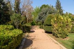 Eram ogród w Shiraz Iran obrazy stock
