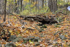 Eramosa石灰岩地区常见的地形保护地区- 2014年10月26日 图库摄影