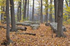 Eramosa石灰岩地区常见的地形保护地区- 2014年10月26日 免版税库存照片